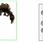 Probar un nuevo peinado con la WebCam