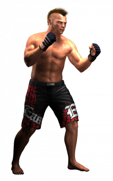 mmaprofighter