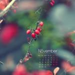 Calendario Mes Noviembre 2011
