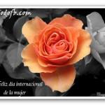 dia-de-la-mujer-facebook4