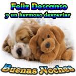 buenas_noches_que_descanses13