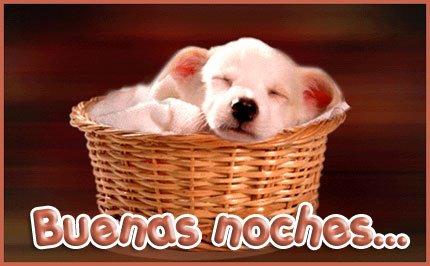 Imagenes para dormir animadas imagui - Almohadas buenas para dormir ...