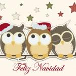tarjeta buhos navidad