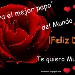 Feliz dia del padre rosas rojas corazones  2011