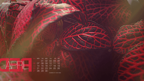 apr-14-red-april-preview
