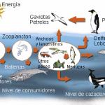 ecosistemas1