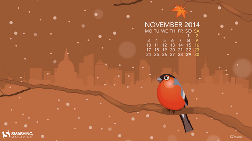 nov-14-november-bird-preview