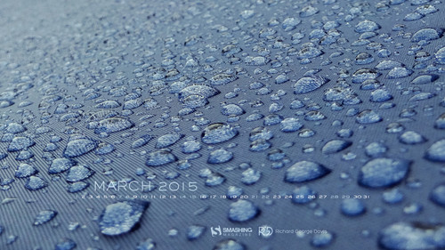 mar-15-after-the-rain-preview
