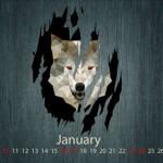 Calendarios de enero 2016