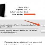 Guia para actualizar el Iphone 3G