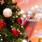 Tarjetas y postales de Navidad 2012 para imprimir