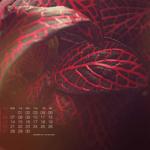 Calendarios Abril del 2014