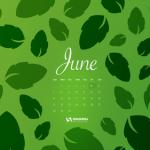 Mejores calendarios de junio 2015